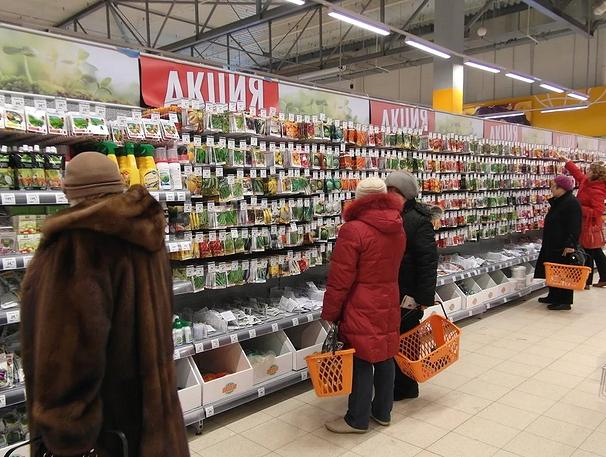 Оптовый рынок семян